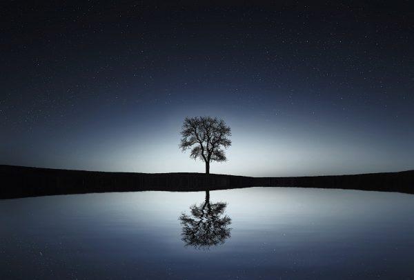 Protégé: La photo de Nuit